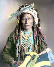 "HEEBE-TEE-TSE SHOSHONE NATIVE AMERICAN INDIAN 1899 8x10"" HAND COLOR TINTED PHOTO"