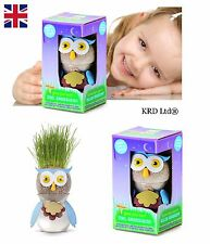 Kids Magic OWL Grass Head Grow Plant Hair Make Your Own Pot Toy Christmas Gift