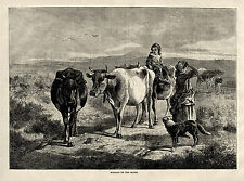 YOUNG GIRL RIDING DAIRY COW ON THE MOOR, Cattle Herding Dog 1875 Art Print