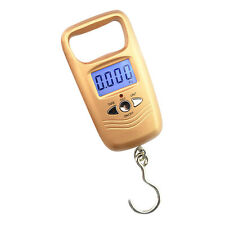 Mini 50kg 10g LCD Digital Fish Hanging Luggage Weight Electronic Hook Scale tool
