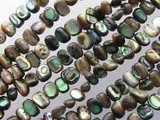 """ABALONE BEADS 6x4mm nugget SHELL 76 pc Iridescent Multicolor 16"""" Strand freeform"""