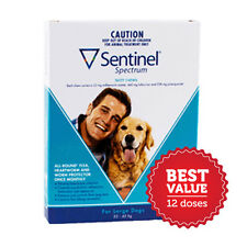 Sentinel Spectrum for Large Dogs 23-45kg 12 Pack