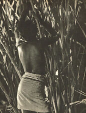 Vintage Lionel Wendt Asian Semi Nude Male Bamboo Canes Photogravure Photo Print