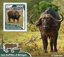 Central African Rep 2016 MNH African Buffalos 1v S/S Buffalo Wild Animals Stamps