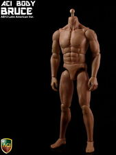 "ACI Toys AB13 1/6 Flexible Muscular Latin_ Body Model Fit 12"" Male Figure Head"