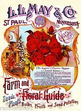 1898 May & Co. Roses Vintage Flowers Seed Packet Catalogue Advertisement Poster