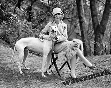 Photograph Vintage 1st Miss America Margaret Gorman & Dog Long Goodie 1925  8x10