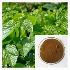 Mulberry Leaf Powder Extract 5:1 (5grams)