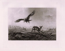 "Outstanding Antique 1800s JOSEPH WOLF Etching ""The Baffled Hunter"" SIGNED COA"
