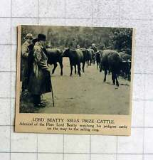 1919 Lord Beatty Sells His Prize Cattle