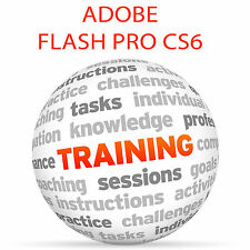 Adobe FLASH PROFESSIONAL CS6 - Video Training Tutorial DVD