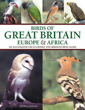 Birds of Great Britain, Europe and Africa by David Alderton (Paperback, 2004)