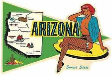 Arizona  AZ  Pin-Up Girl Pennant   Vintage 1950's  Style  Travel Sticker  Decal