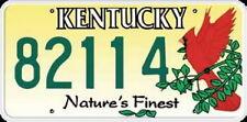 Licence Plate - KENTUCKY  Kennzeichen USA Nummernschild DEKO, NEU OVP!!