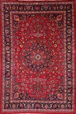 Vibrant Color Traditional Floral 8x12 Signed Mashad Persian Oriental Area Rug