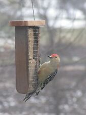 Double Suet Bird Feeder - Made out of Barn wood