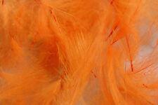 1g Plumes de Cul de Canard (CDC) Orange Fluo montage mouche fly tying truite