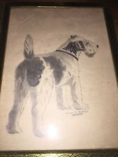 Vintage Pencil Drawing Of Airedale Terrier By Mary Mathis