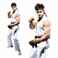 RYU Street Fighter Mens Martial Art Video Games Stag Party Cosplay Fancy Costume