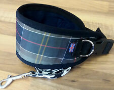 "GREYHOUND / LURCHER COLLAR FLEECE LINED ADJUSTABLE 13"" - 17"" INC FREE LEAD"