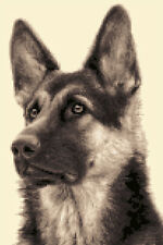 GERMAN SHEPHERD DOG, ALSATIAN full counted cross stitch kit