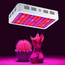 1000W LED Full Spectrum Grow Light 2 Chip for Medical Plants Veg Bloom Indoor