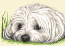 MALTESE dog complete counted cross stitch sewing kit *STUNNING