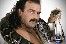 Jake the Snake Roberts 3 disc DVD compiliation set - Early Years