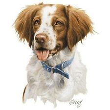BRITTANY  DOG Head with Collar on Large Fabric Panel to Sew