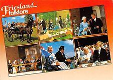 BT5884 Friesland folklore chariot horse chevaux     Netherlands