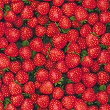 Fabri-Quilt Farmer John's Garden Party Strawberry 100% cotton Fabric by the yard
