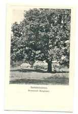 Danish Missionery Society in India Santal Mission Mango Trees Flowering PC 1910s