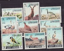 Jordan 1968 - MNH - Vogels/Birds/Vögel
