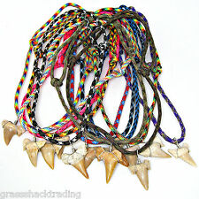WHOLESALE 72 Piece Lots Fossil Shark Tooth Paracord Necklaces Lge Sharks Teeth