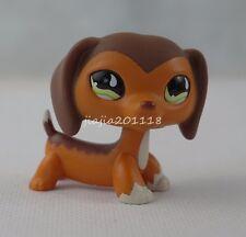 Littlest Pet Shop LPS Brown Savanah Dachshund Dog #675 Puppy Green Eyes Toy #n45