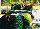 Reactive Dying Peacock Long King/Queen Size Quilt Cover Set Set 210x245cm New