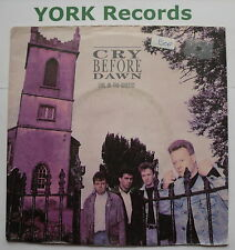"""CRY BEFORE DAWN - Girl In The Ghetto - Excellent Condition 7"""" Single Epic WEX 1"""