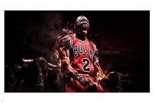 nate ROBINSON BASKETBALL player POSTER 24X36 sports GREAT ATHLETE new