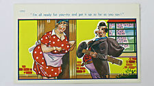 1950s Vintage Comic Postcard Chimney Sweep Wood Burner Flue Housewife Risque