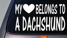 My heart belongs to a Dachshund sticker decal *D975*