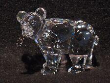 Swarovski GRIZZLY BEAR CUB - # 7637 000 007 / 261 925 MIB