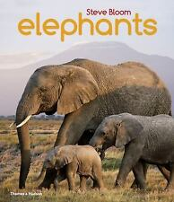 Elephants by David Henry Wilson and Steve Bloom (2015, Paperback)