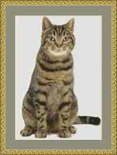 Tabby Cat Cross Stitch Kit