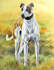 "GREYHOUND COURSING RACING DOG FINE ART PRINT  ""The Boy Racer"""