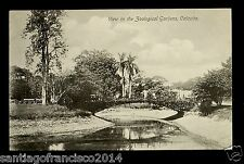 British☀INDIA 172-Calcutta -View in the Zoological Gardens