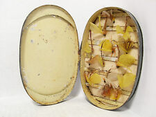 Vintage Antique Japanned Oval Fly Fishing Cast & Fly Box & Flies