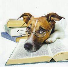 Klappkarte de luxe: Jack Russel - Terrier Chico als Leseratte