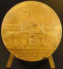 Medaille Vue de l'Hopital Saint Louis Docteur Albert Mouchet 1931 C Pillet medal