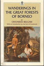 Wanderings in the Great Forests of Borneo -  Odoardo Beccari