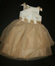 New Janie and Jack Metallic Colorblock Dress Size 8 Year NWT Forever Rose Line